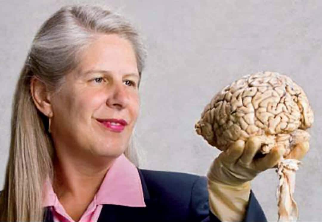 Jill Taylor Wiki